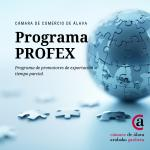 Jornada presentación del Programa de promotores de exportación a tiempo parcial - PROFEX