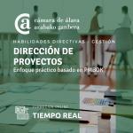 Dirección de proyectos: enfoque práctico basado en PMBOK - Escuela Virtual -