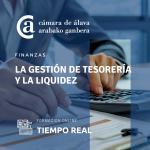 La Gestión de Tesorería y la liquidez -ESCUELA VIRTUAL-