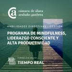 Mindfulness, liderazgo consciente y alta productividad