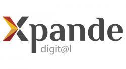 Plan de posicionamiento digital para mercados exteriores - XPANDE DIGITAL